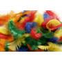 Fjær/Dun Ass. farger 5-8cm - ca. 7g