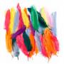 Indianerfjær, L: 12-15 cm, 350 stk., ass. Farger