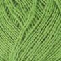 Ístex Einband Garn 1764 Vivid green